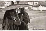BIRMANIA MYANMAR NIÑOS MONJES BUDISTAS