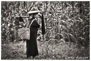 BIRMANIA MYANMAR CAMPESINA